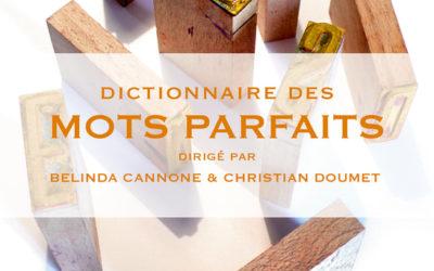 """Chronique littérature """"LE LIREZ-VOUS ?"""" – Dictionnaire des mots parfaits"""