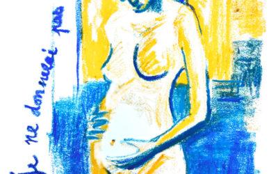 Sofia : jamais sans ma fille…chapitre 1/3