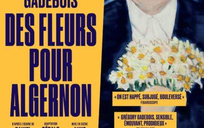 """""""Des fleurs pour Algernon"""" au Théâtre du Petit St Martin jusqu'au 14 mars 2020"""